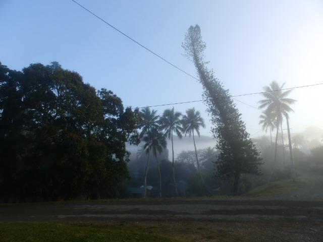 Bopope à 6 h 30 (Brouillard)